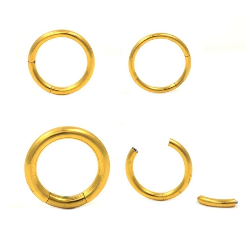 Gold Tone Ip Segment Ring Piercing Hoop 16g 10g Use For