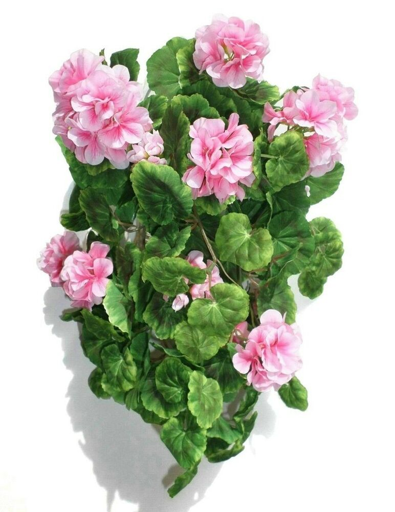 Geranium ivy 16 41cm artificial silk flowers for Geranium artificiel jardiniere