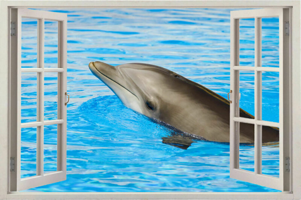 Window 3d wall decal sticker dolphin vinyl dolphins decor for Dolphins paradise wall mural