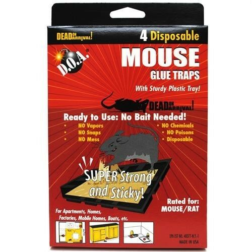 lot of 4 mice mouse sticky glue traps trays ebay. Black Bedroom Furniture Sets. Home Design Ideas