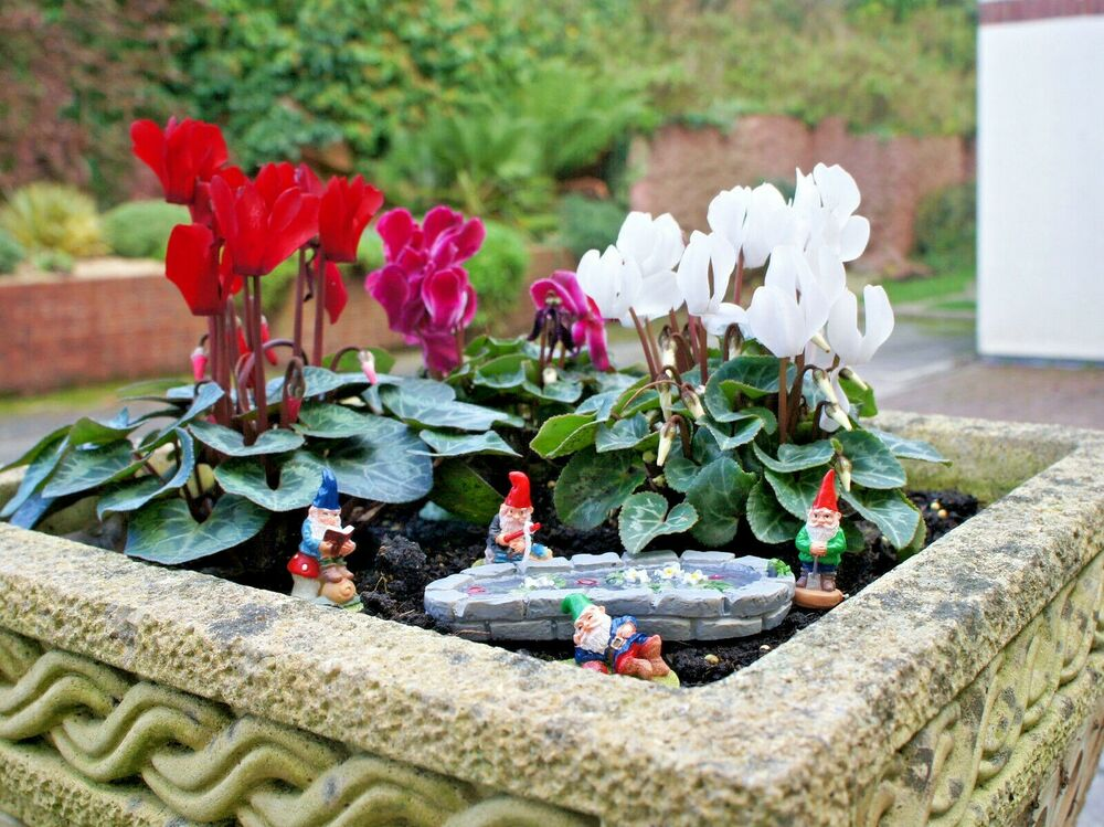 miniature garden gnomes for fairy gardens choice of two sets new ebay. Black Bedroom Furniture Sets. Home Design Ideas