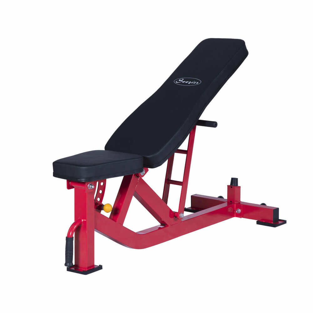 Soozier Adjustable 10 Position Home Fitness Weight Bench Incline Decline Workout Ebay