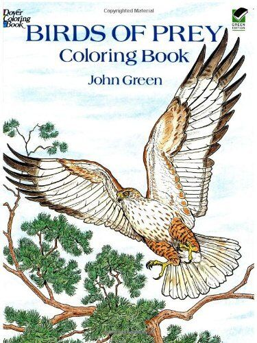 Birds Of Prey Adult Colouring Book Creative Art Therapy