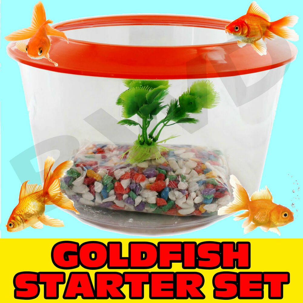 goldfish starter set kit pack tank aquarium bowl lid gravel plant gold fish home ebay. Black Bedroom Furniture Sets. Home Design Ideas