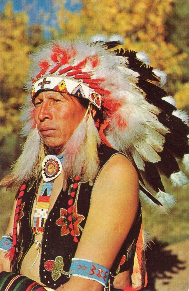natives americans Native americans the plains indian has been one of the most important and pervasive icons in american culture imagine him, for example, as a young man on horseback.