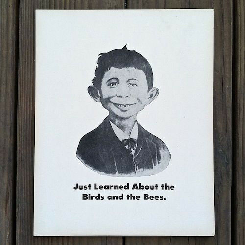 Vintage original alfred e neuman birds bees comical black white sign nos old ebay