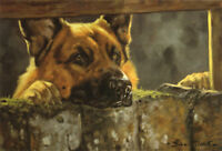 GERMAN SHEPHERD DOG GSD ALSATIAN ART LIMITED EDITION PRINT - by John Trickett