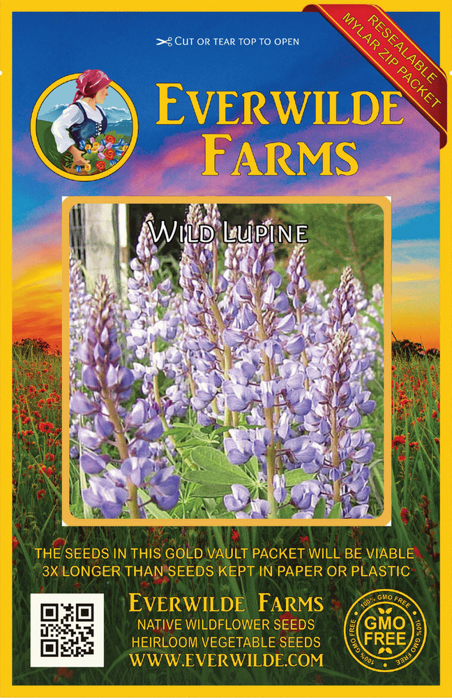 25 Wild Lupine Native Wildflower Seeds - Gold Vault Jumbo ...