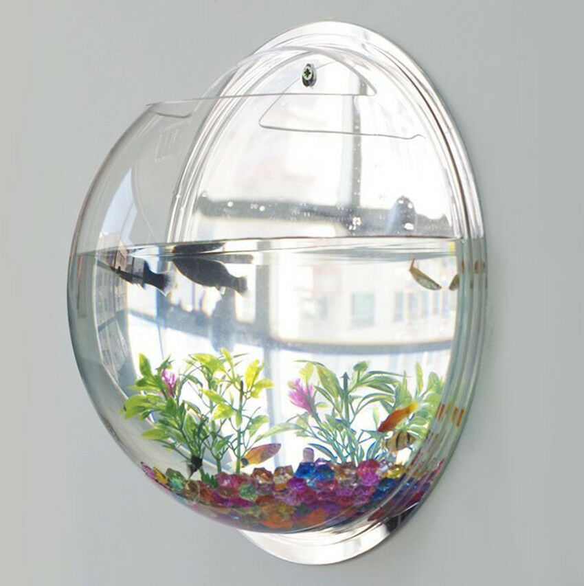 New wall mounted fish tank bowl bubble aquarium hanging for How to make a fish bowl