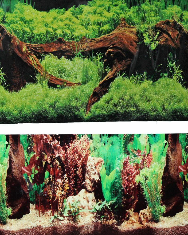 9091 20 x 48 fish tank background 2 sided driftwood for Fish tank backdrop