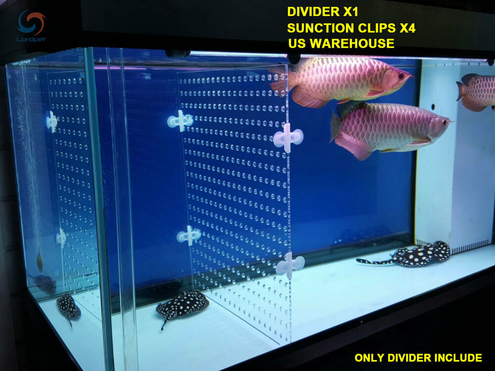 Aquarium Acrylic Divider With Holes 4 Suction Cup Betta