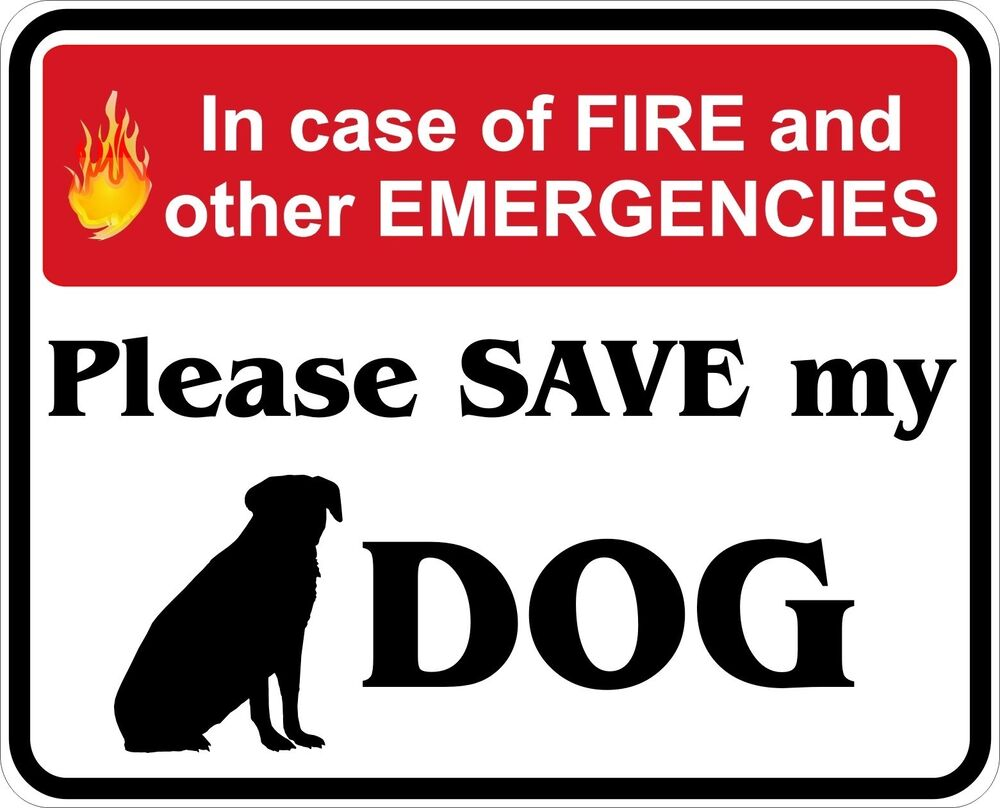 In Case Of Fire Save My Dog Decals Stickers Ebay