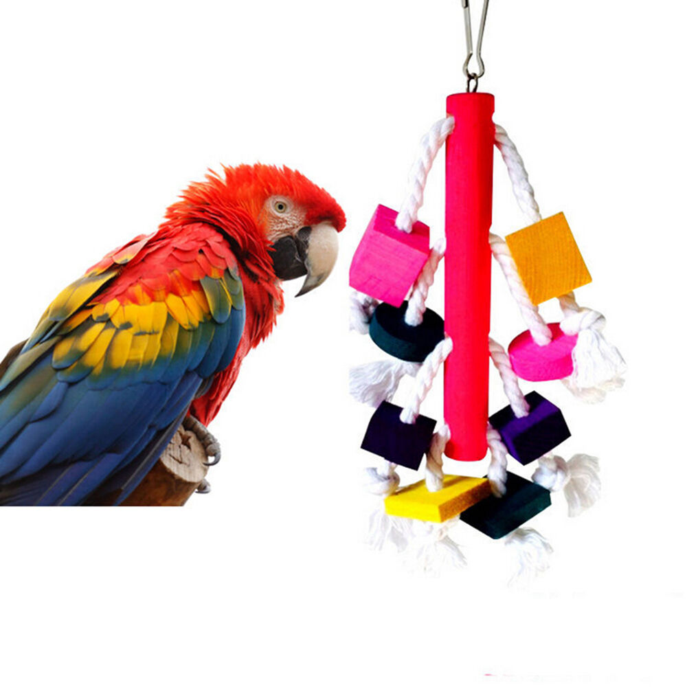 Pet Bird Toys : Cm swing bird toy parrot rope harness cage toys parakeet