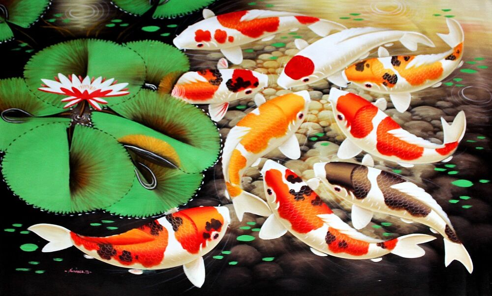 Spotted japanese koi fish in lily pond art print for Golden ornamental pond fish crossword