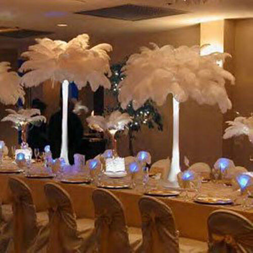 new wholesale 10 pcs natural ostrich feathers for wedding prom rh ebay com cheap feather centerpieces for weddings peacock feather wedding centerpieces