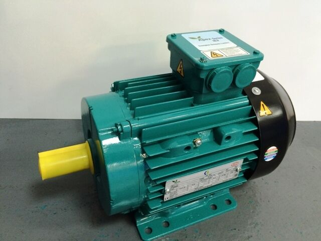 Crompton greaves 3 phase electric motor 2 4 for Two phase electric motor
