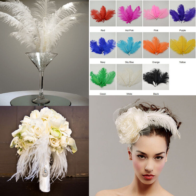10pcs large ostrich feathers craft wedding party costume for Where can i buy feathers for crafts