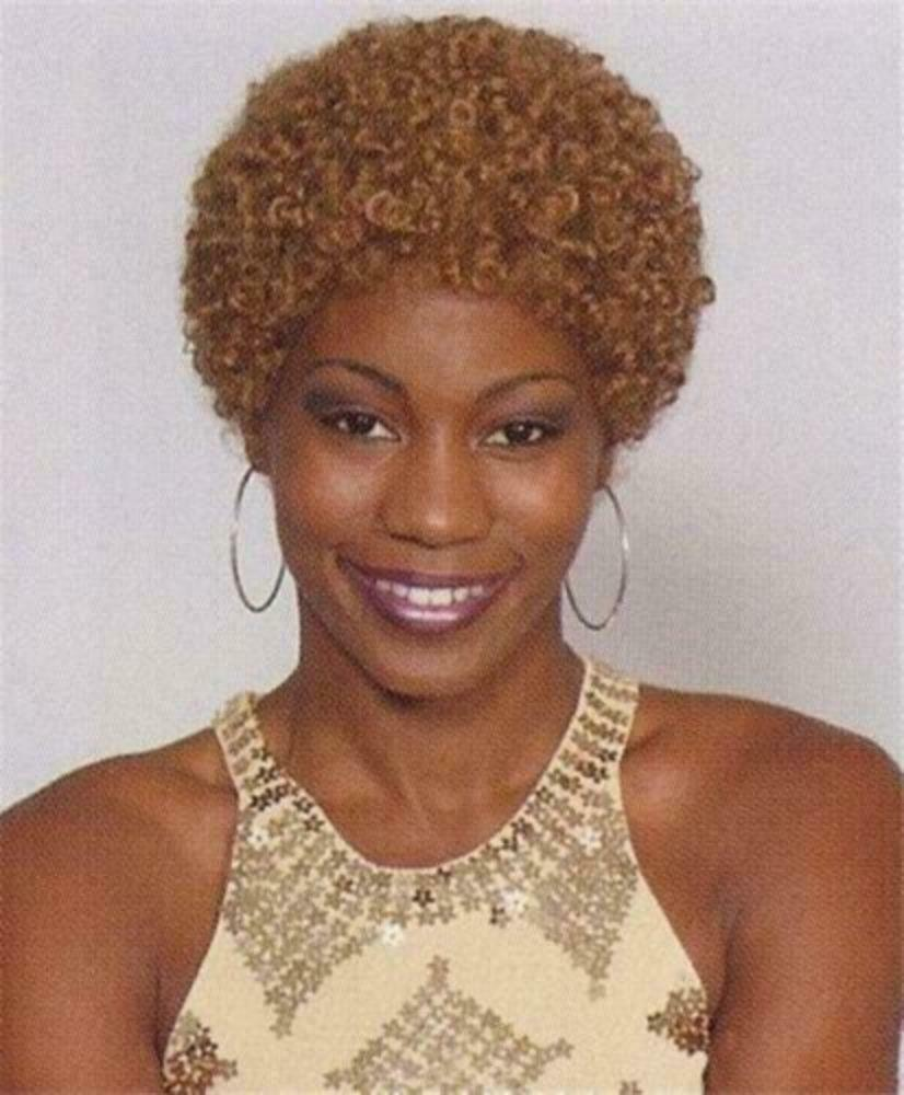 Strawberry Blond Short Haired Afro Wig Small Afro Wig Ebay