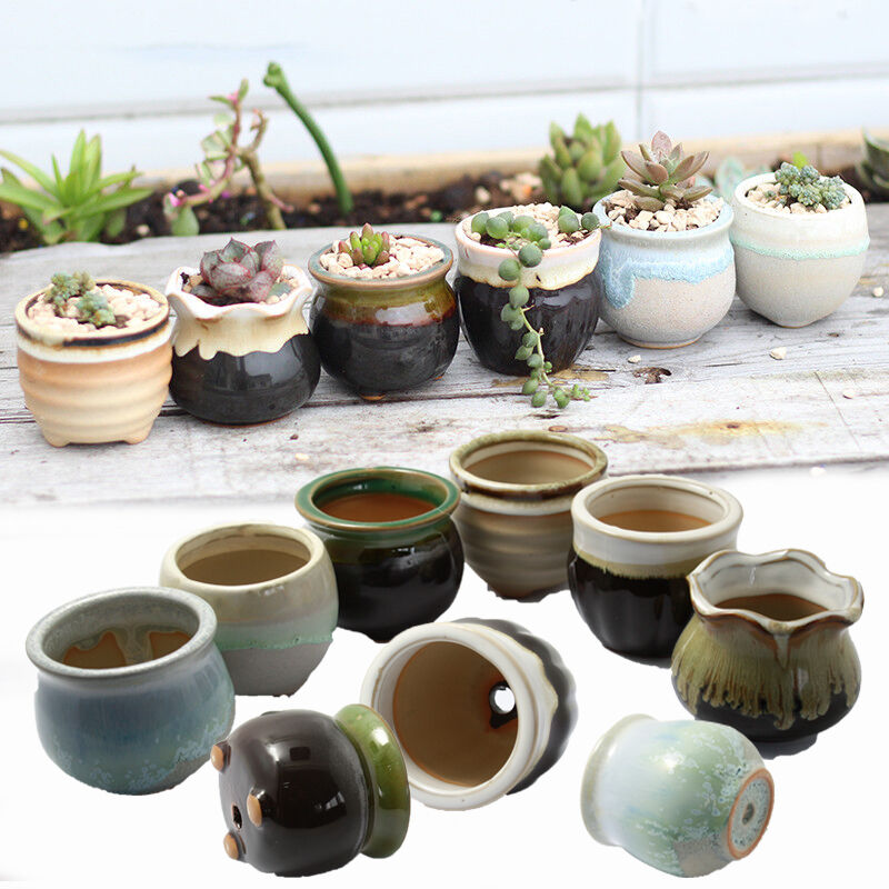mini succulent planter glazed ceramic plant flower bonsai. Black Bedroom Furniture Sets. Home Design Ideas