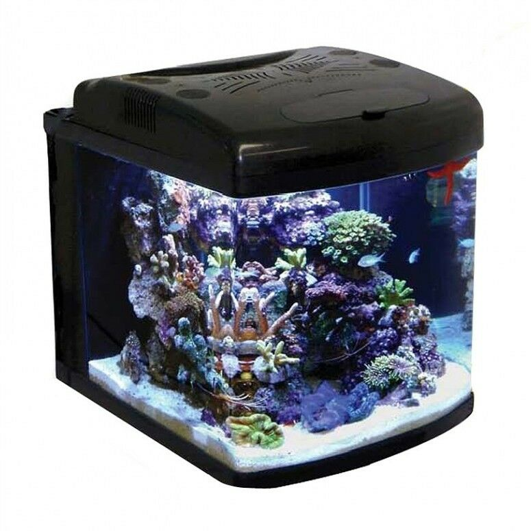 28 gallon jbj 28 gallon nano cube led aquarium for Aquarium nano cube