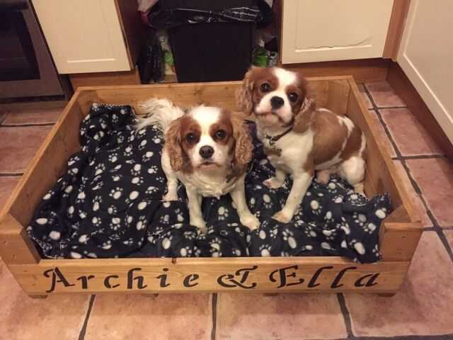 Personalised Wooden Dog Cat Puppy Kitten Whelping Box Bed
