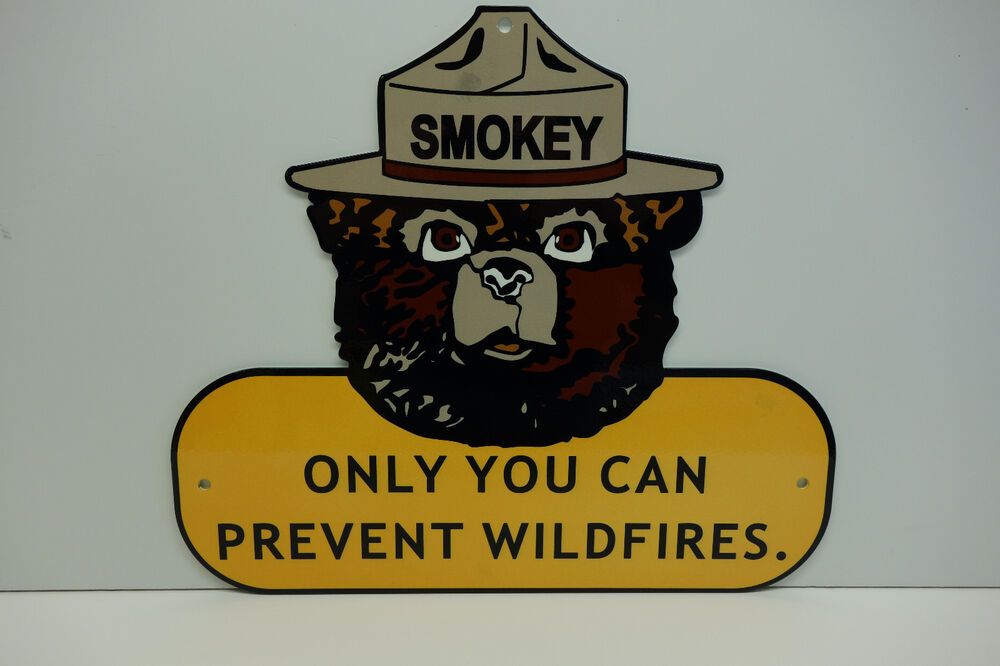 Smokey The Bear Steel Enamel Only You Can Prevent. Wharton Masters In Finance Elon Self Storage. Limited Liability Company Pros And Cons. The Academy Of Arts University. Psychology Programs In California. How Many Years To Become An Rn. Career Technical Institute Dc. Bayview Mental Health Center 05 Dodge 2500. Remote Surveillance Systems V A Hearing Test