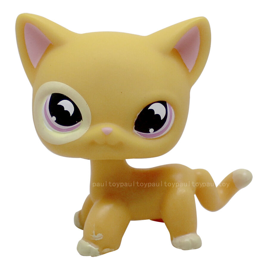 Hasbro owns the rights of both Blythe and Littlest Pet Shop, toy lines respectively introduced in and Both lines were originally manufactured by Cincinnati-based Kenner Products.
