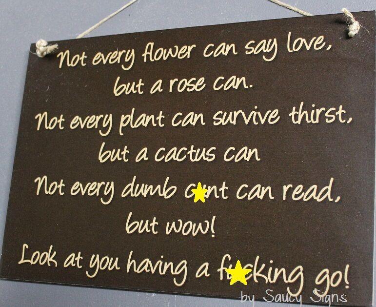Naughty Cactus Rose Love Sign Warning Pub Bar Man Cave Office