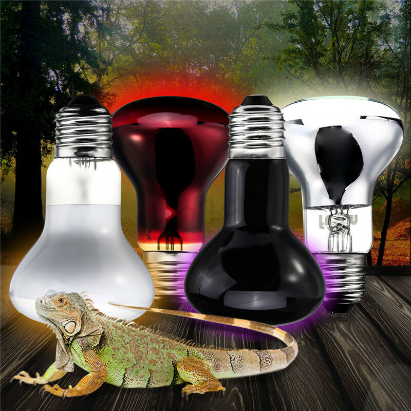 Uva Infrared Heat Lamp Bulb Snake Lizard Frog Turtle