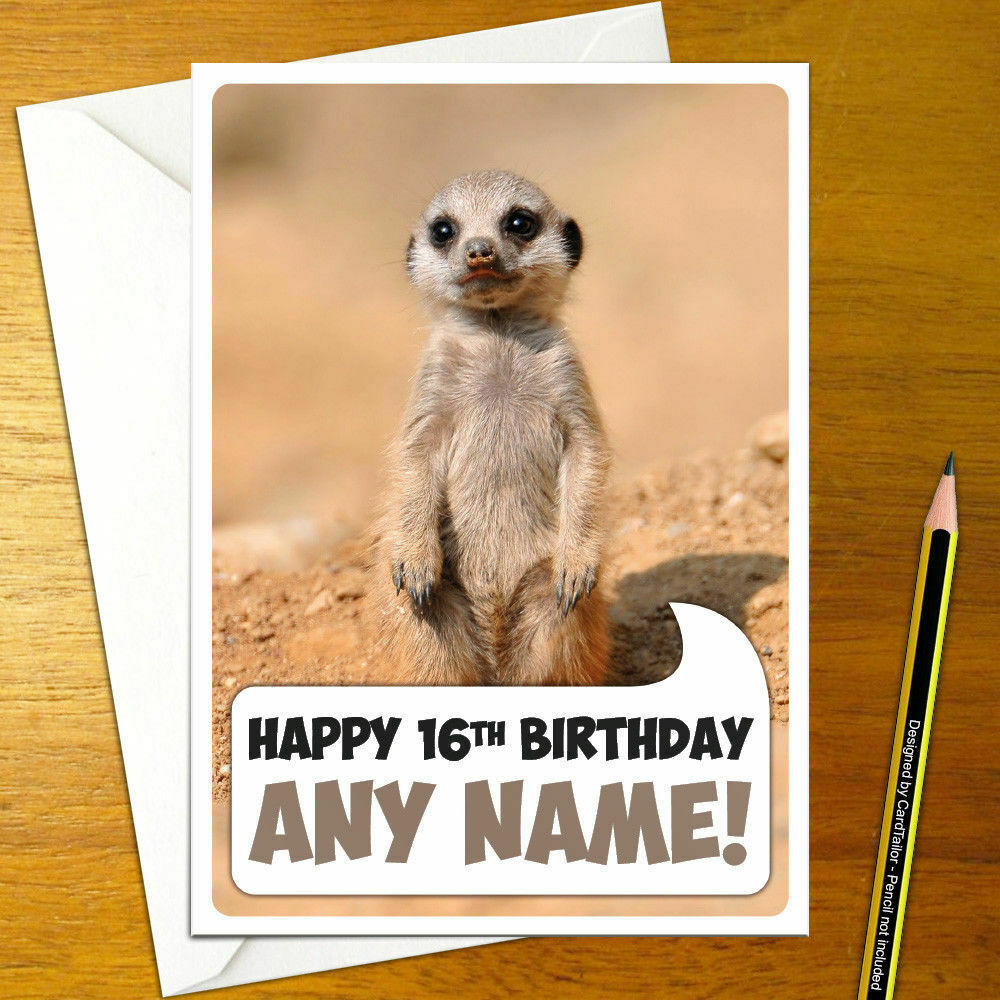 Details About MEERKAT BABY Personalised Birthday Card