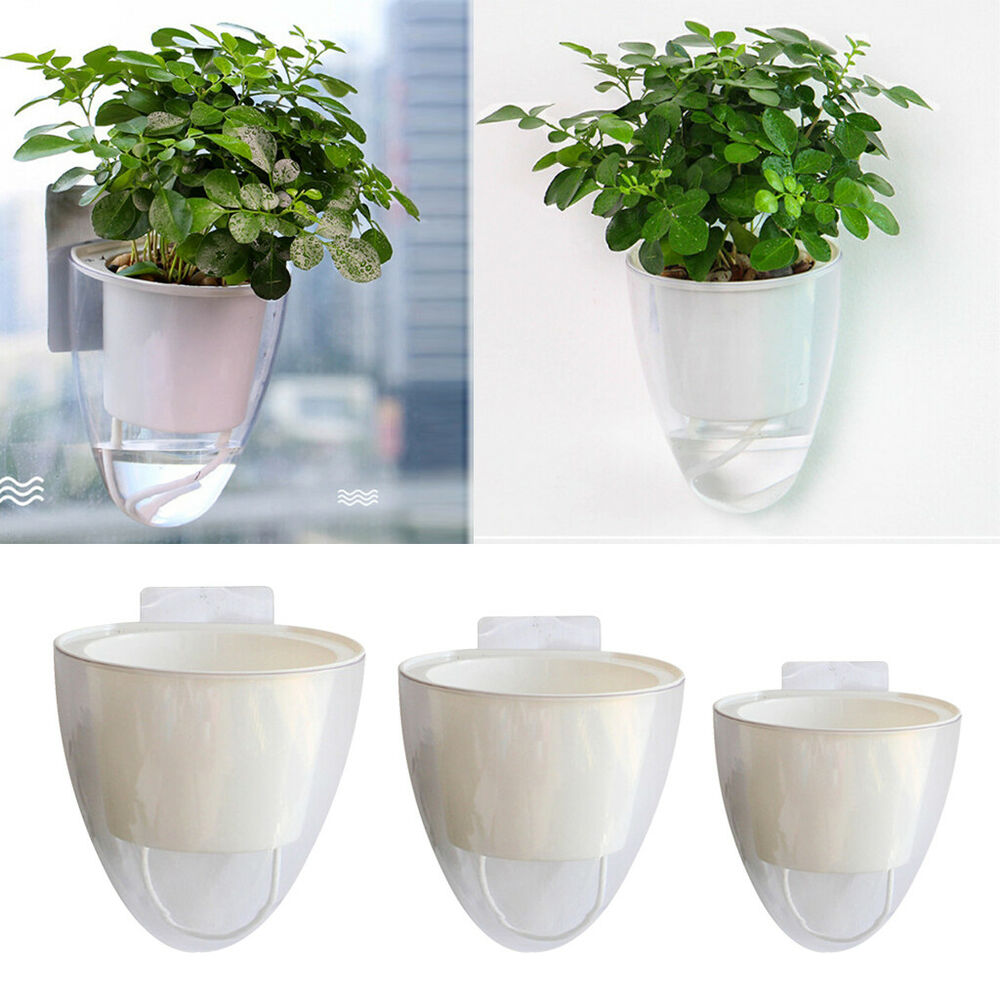 Self Watering Plant Flower Pot Wall Hanging Herb Planter Nursery