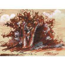 Original ACEO pen and ink/watercolor drawing of a tree group