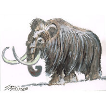 Original ACEO pen and ink/watercolor drawing of a woolly mammoth