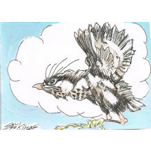 Original ACEO pen and ink/watercolor drawing of First Flight