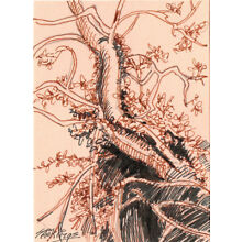 Original ACEO pen and ink/watercolor drawing of a dead tree in overgrown bramble