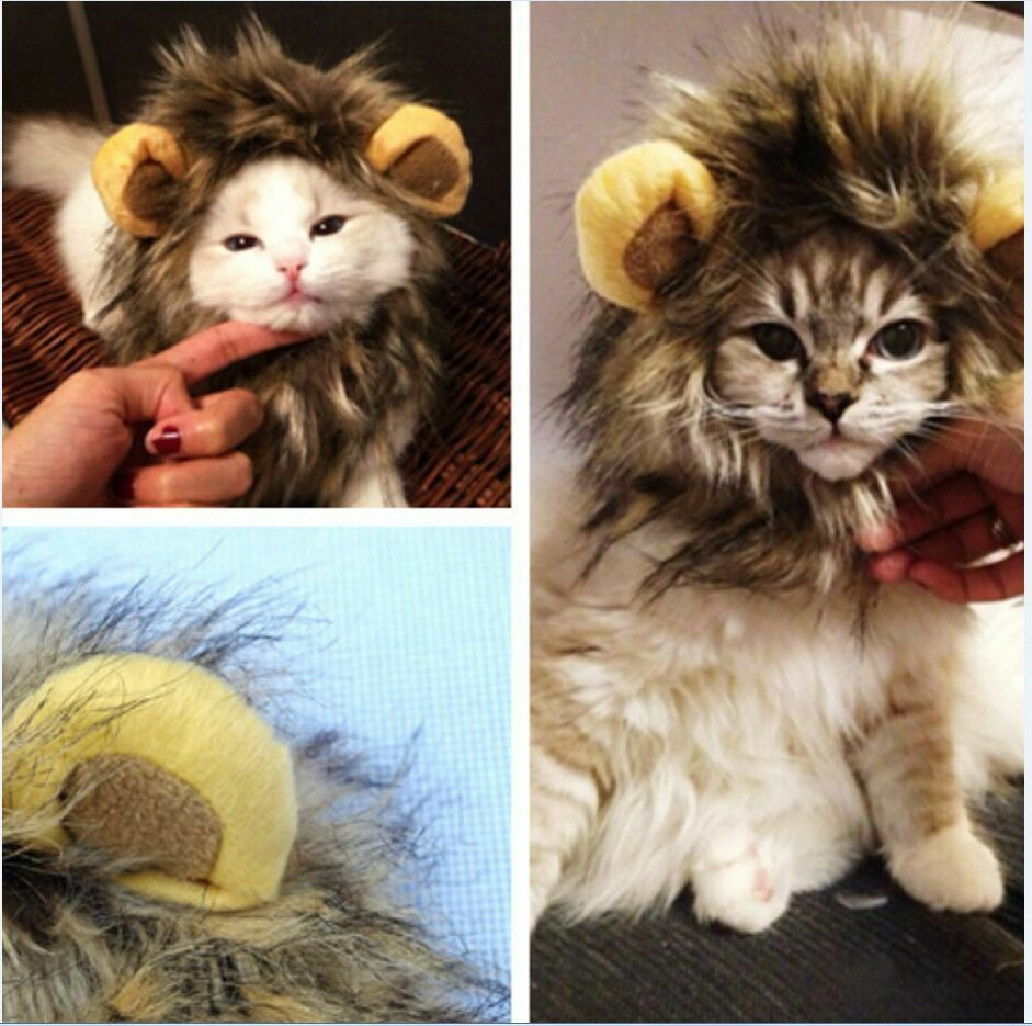 00e2202d3 Details about Pet Costume Lion Mane Wig Head Warmly Hat for Dog Cat  Festival Clothes With Ears