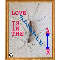 Love is in the Air  9x11 Framed Art