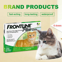 Kyпить Frontline Plus Flea and Tick Treatment for Cats - 6 Doses FREE SHIPPING на еВаy.соm