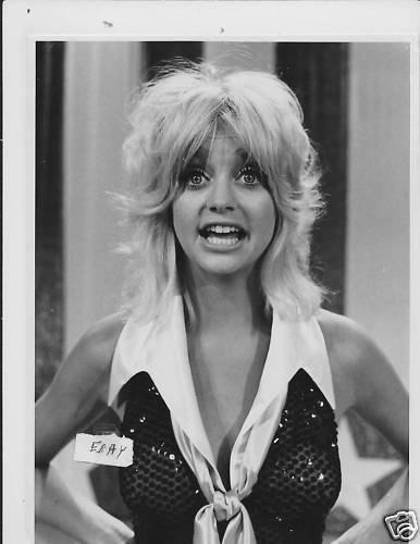 Goldie Hawn Laugh-In Vintage Photo  Ebay-8102