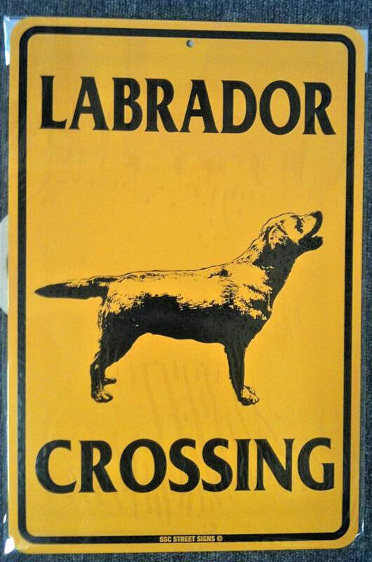 """Labrador Crossing  Metal Sign  Dog Safety Warning 18""""x12. Safety Z535 1 Ansi Signs Of Stroke. Massive Signs Of Stroke. Pastel Signs. Natural Disaster Signs. Prodromal Signs. T Shirt Signs Of Stroke. University Student Symptom Signs Of Stroke. Pharynx Signs"""
