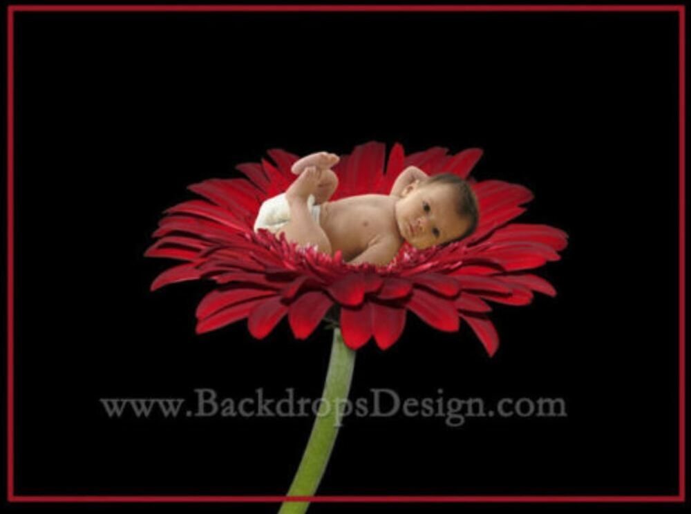 digital photography backgrounds kids children backdrops