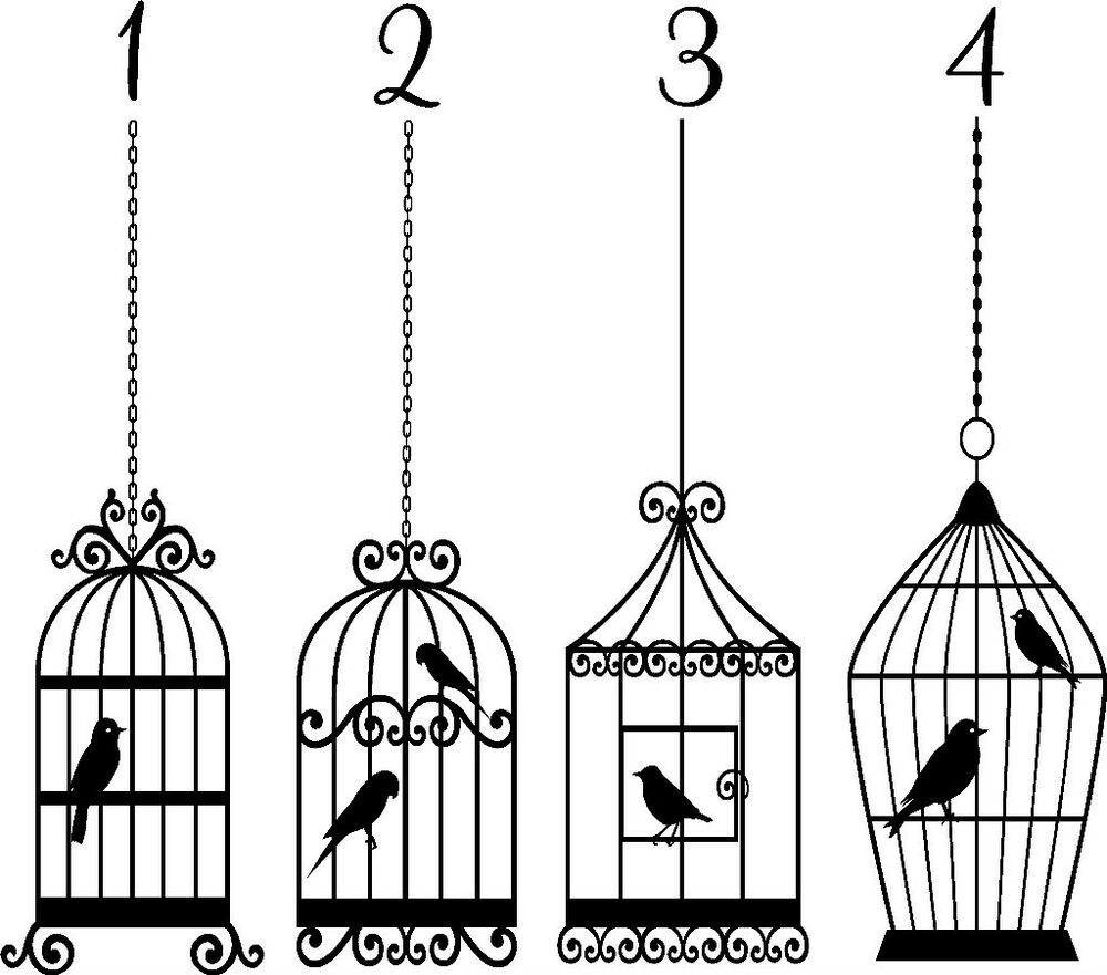 bird cage vinyl sticker wall art bedroom decal