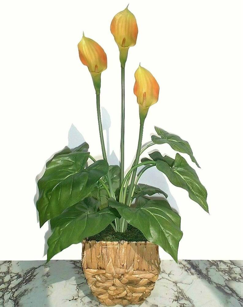 Calla Plant: Artificial Real Touch