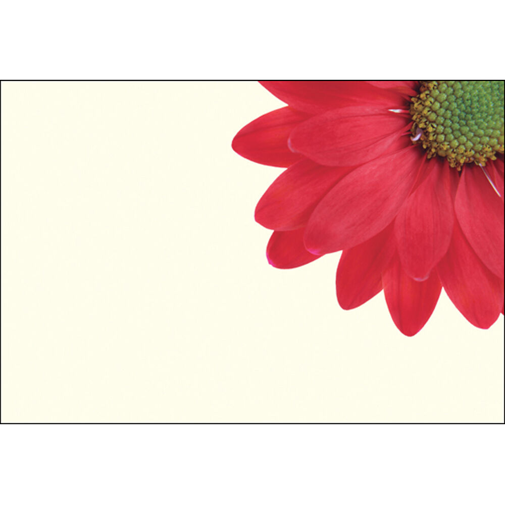 Pack Of 25 Floristry Message Cards Florist Gift Card For Any Floral