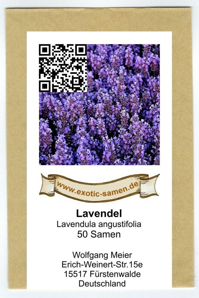 echter lavendel lavandula angustifolia 50 samen ebay. Black Bedroom Furniture Sets. Home Design Ideas