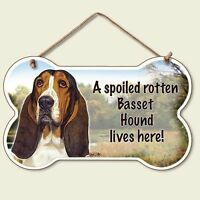 BASSET HOUND Spoiled Rotten SIGN/PLAQUE 5 3/4 X 9.5