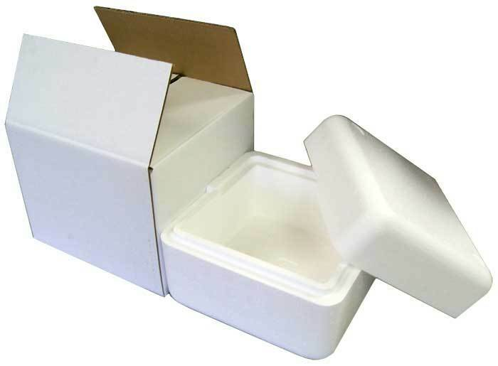 8x8x6 Insulated Styrofoam Shipping Cooler W Box Container