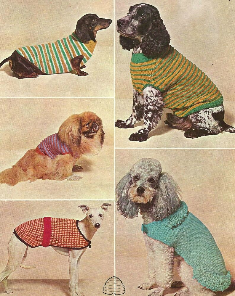 Knitting Patterns For Dachshund Dog Sweaters : VINTAGE KNITTING PATTERN - DOG COAT / COATS - DACHSHUND GREYHOUND SPANIEL POO...