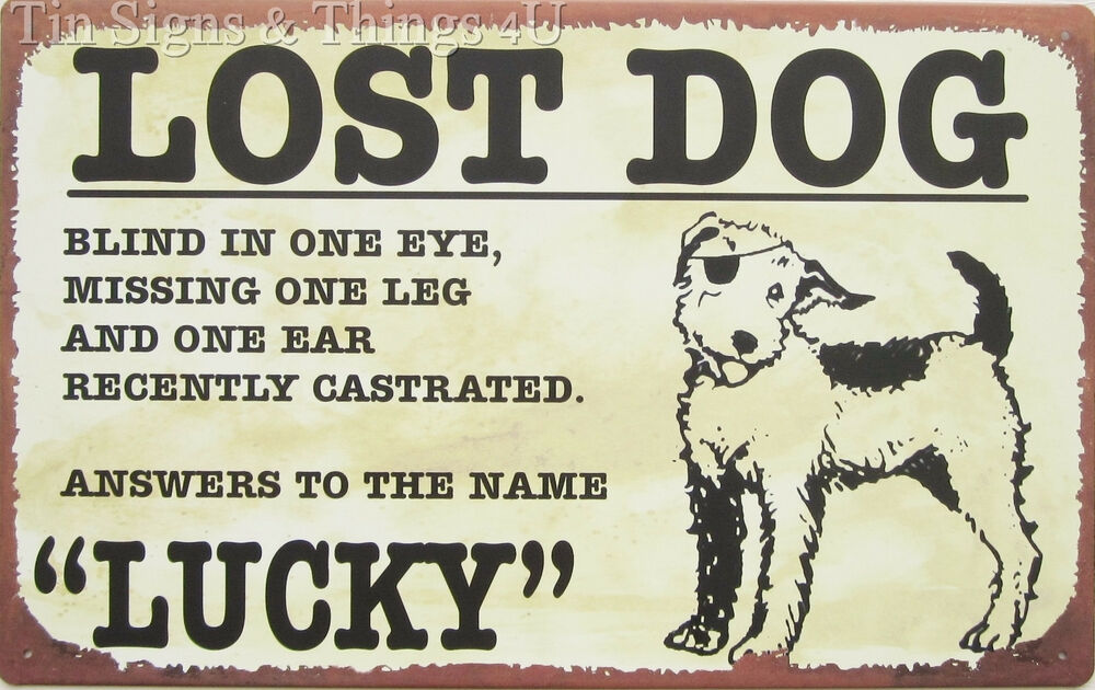 Dog Named Lucky Poster