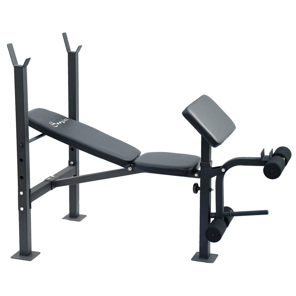 Weight Bench Exercise Gym Machine Hyperextension Fitness Strength Training Ebay